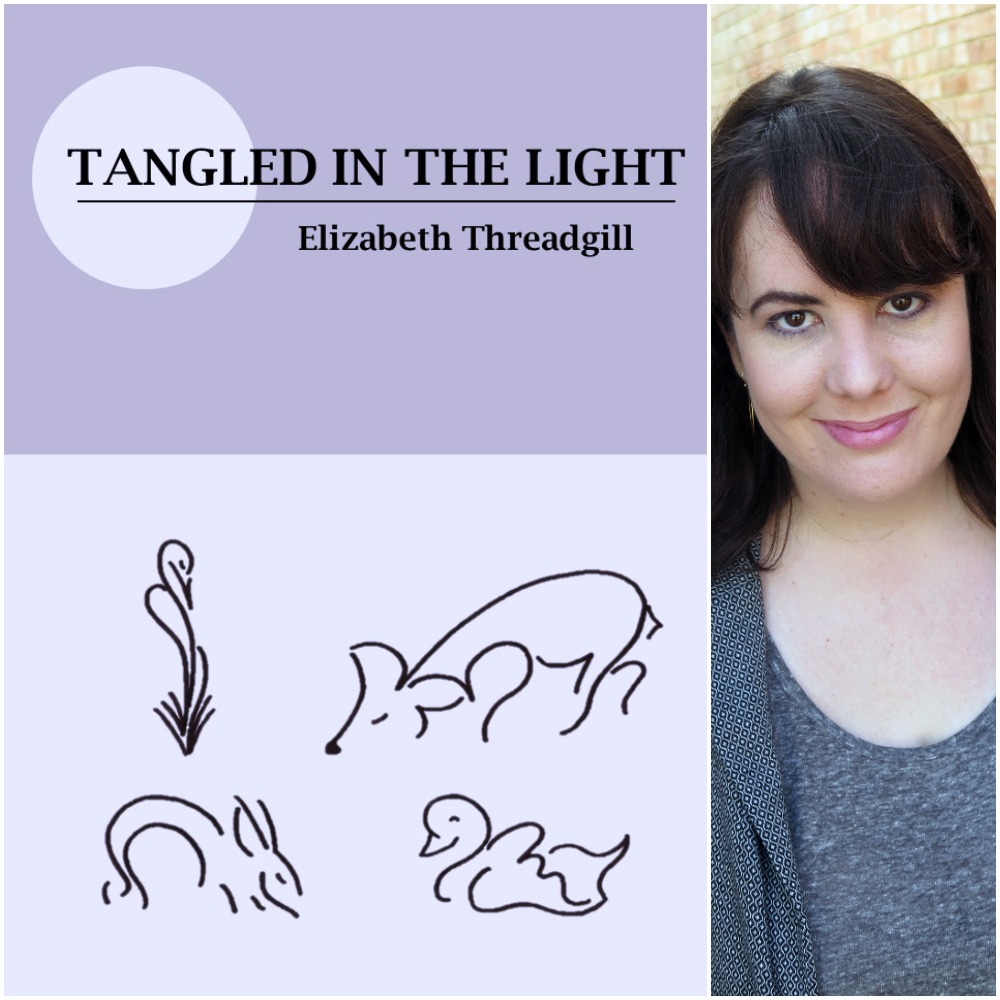 Tangled In The Light By Elizabeth Threadgill