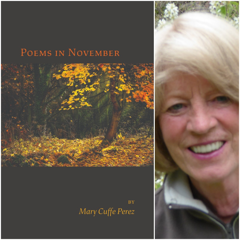 Image result for Poems in November mary cuffe perez